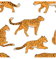 leopard print predator in motion wild animal vector image