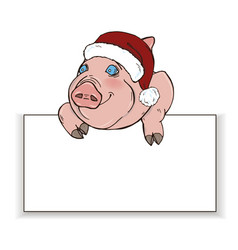 Pig in santa hat peeps out from behind white recta vector