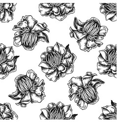 seamless pattern with black and white globeflower vector image