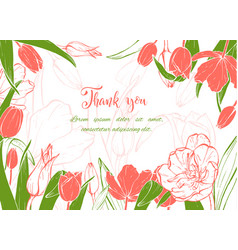 sketch linear tulips blossom vector image
