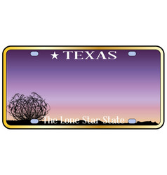 texas license plate vector image