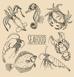Vintage seafood sketches collection hand vector