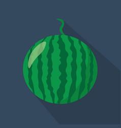 watermelon cartoon flat icondark blue background vector image vector image