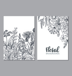 Floral backgrounds with hand drawn herbs and vector