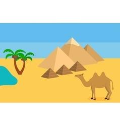 Camel in sahara desert with pyramids and palm vector