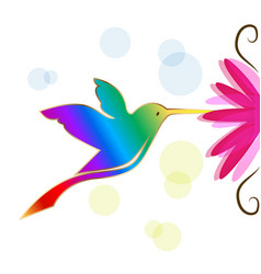 colorful hummingbird symbol vector image
