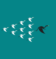 Flock of birds flying on blue background vector
