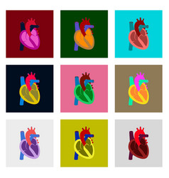 icons set in flat style human organ heart vector image