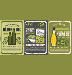Olive oil extra virgin quality olives products vector