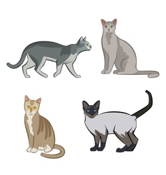Set of cute cartoon kitties or cats vector image