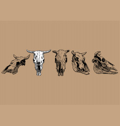 Cow and bull skull set vector