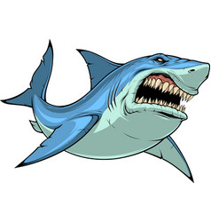 fierce shark attacks vector image