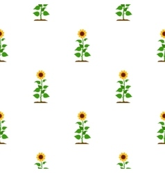 Sunflower icon cartoon Single plant icon from the vector image