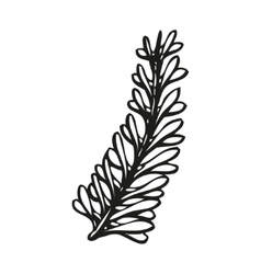 Doodling hand drawn feather in tattoo style vector image