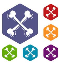 Bone icons hexahedron vector