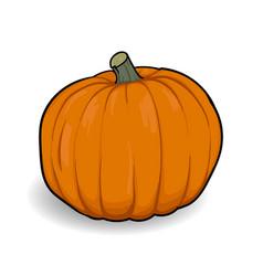 orange pumpkin cartoon vector image