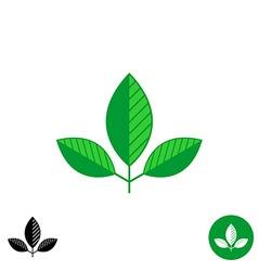 Three leaves simple natural logo vector