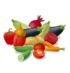 Vegetables harvest vector