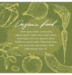 Organic food template vector
