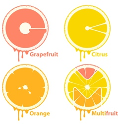 citrus icons vector image vector image