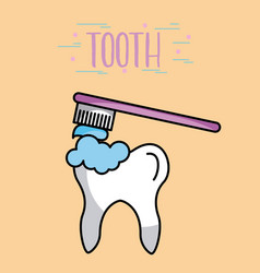 tooth image cartoon vector image