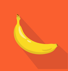 banana flat icon vector image