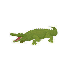 crocodile with open toothy mouth predatory vector image