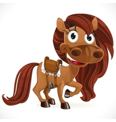 Cute cartoon baby horse vector image