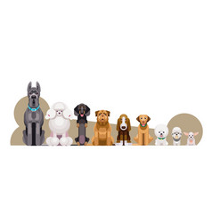 dogs different breeds height vector image