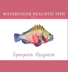 hand painted watercolor edible fish design vector image