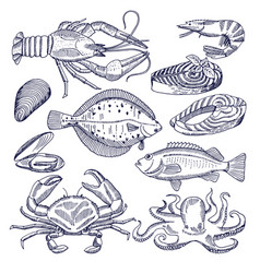 Sea food for restaurant vector