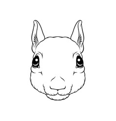sketch of squirrels head portrait of forest vector image