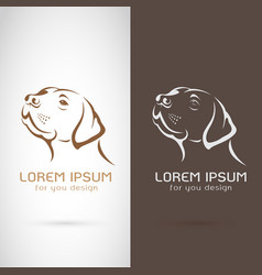 dog head design on white background and brown vector image vector image