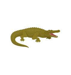 Crocodile aggressive predatory amphibian animal vector