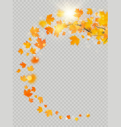 fall maple leaves frame with delicate sun for vector image