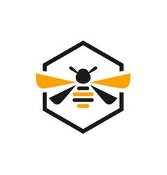 honey bee animal logo vector image