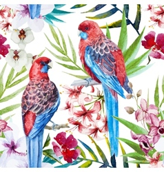 Rosella bird pattern vector image
