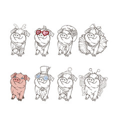 cute pig in different clothing options vector image
