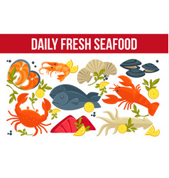 fresh daily seafood fish and lobster crab and vector image