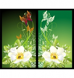 illustration with flowers and butterflies vector image