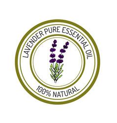 lavender essential oil label aromatic plant vector image