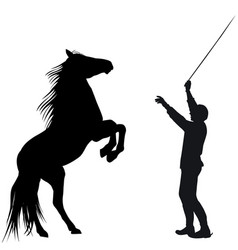 man training horse to rear up vector image