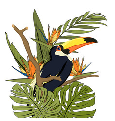 toucan black bird with yellow beak in natural vector image