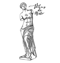 Venus de milo sculpture drawn in engraving vector