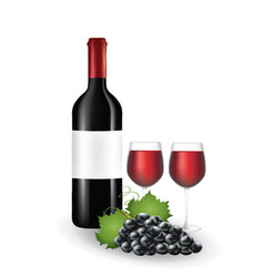 wine bottle with glasses and grapes vector image