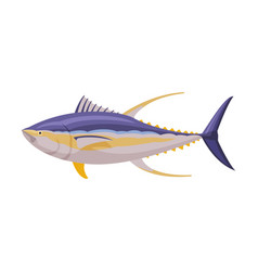 yellowfin tuna fresh aquatic sea fish species vector image