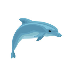 blue dolphin on a white vector image