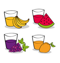 Collection fruits and juices grapes watermelon vector