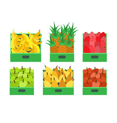 Fruit and vegetables store food containers vector