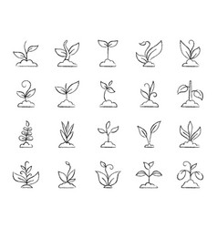 grass charcoal draw line icons set vector image